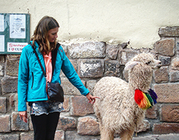A Cherokee-American woman in a turquoise parka, petting a disinterested llama or alpaca