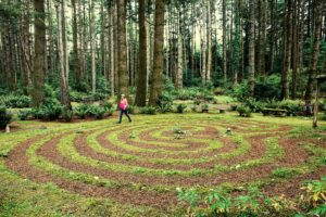 A woman in a pink jacket walking a labyrinth path in the Pacific Northwest with a backdrop of tall trees